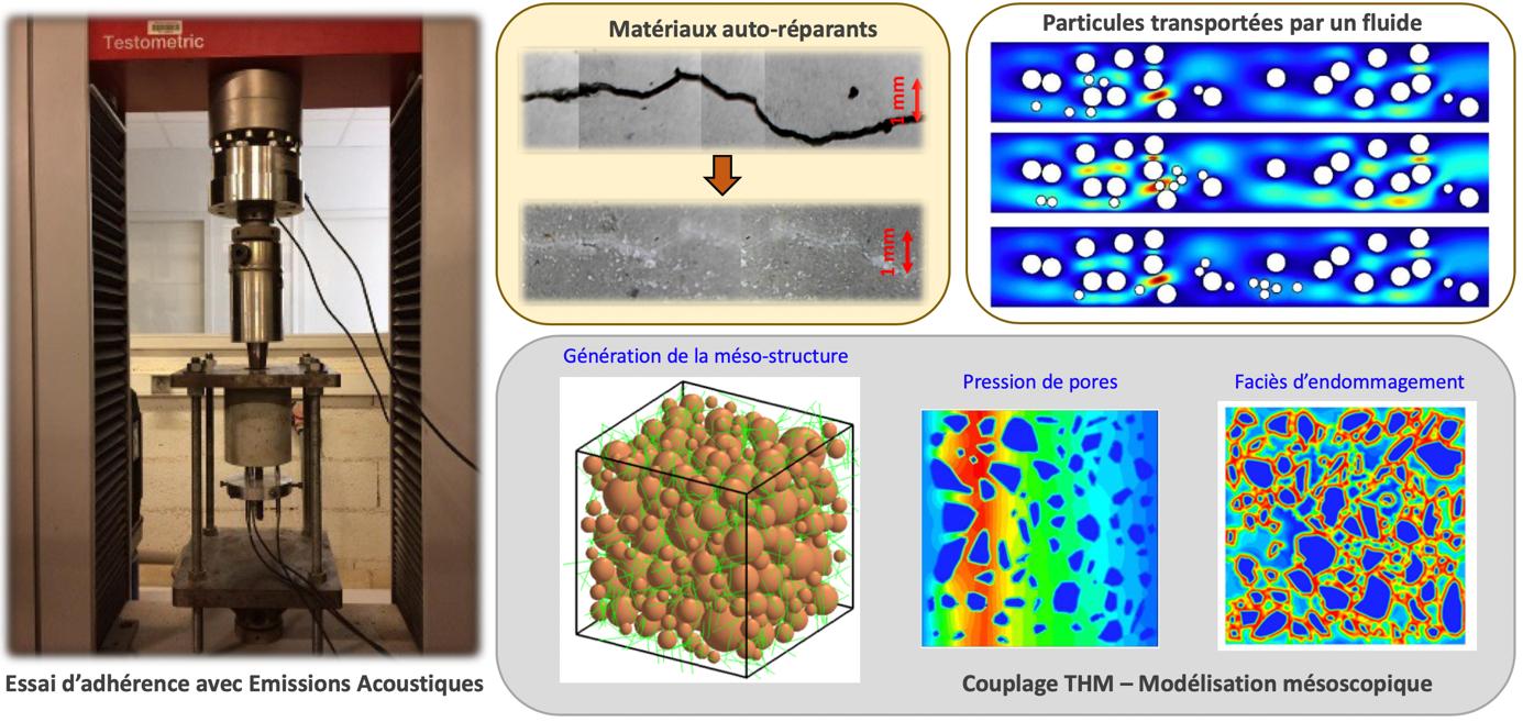 5 Matériaux hétérogènes, fluides et transferts